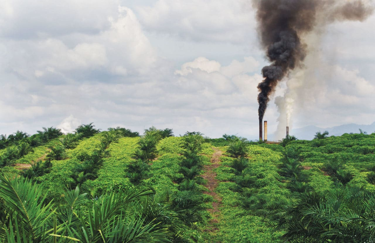 https://opuskinetic.org/wp-content/uploads/2019/10/palm-oil-industry.jpg